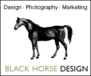 Black Horse Design (North Yorkshire Horse)