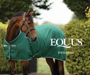 Equus (North Yorkshire Horse)