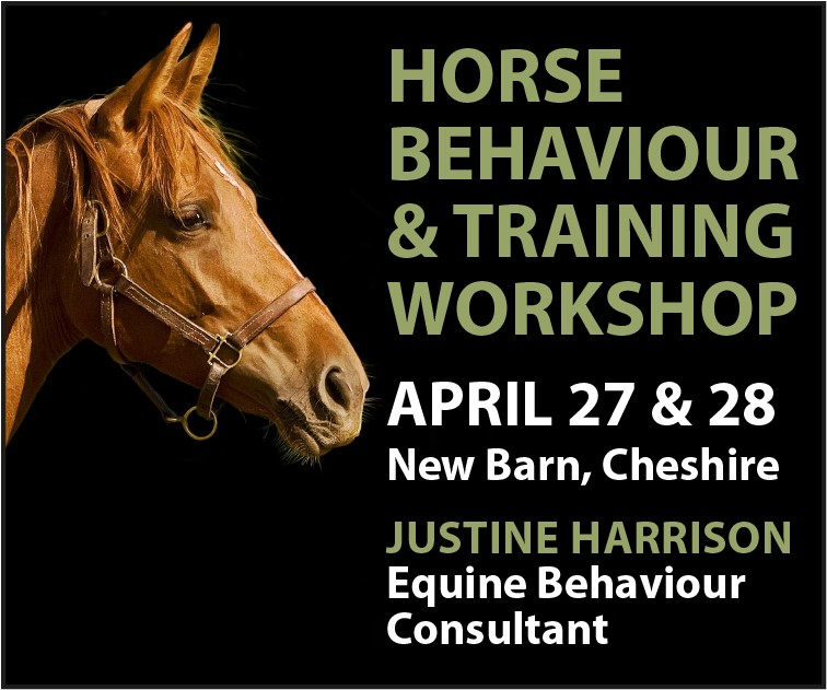 Justine Harrison Workshop April 2019 (North Yorkshire Horse)