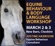 Justine Harrison Workshop March 2019 (North Yorkshire Horse)