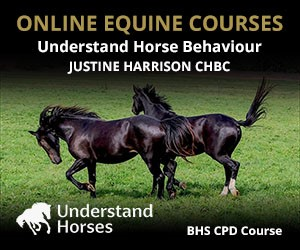 UH - Understand Horse Behaviour (North Yorkshire Horse)