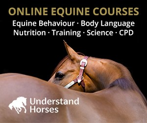 Understand Horses (North Yorkshire Horse)
